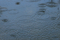 Raindrops on water