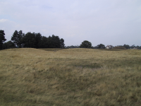 The burial mounds at Sutton Hoo